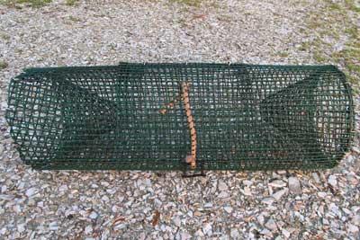 Bait traps for fish for Bait fish trap