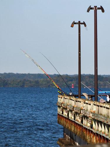kent island matapeake pier fishing