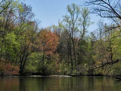 Tuckahoe Creek - Hillsboro MD