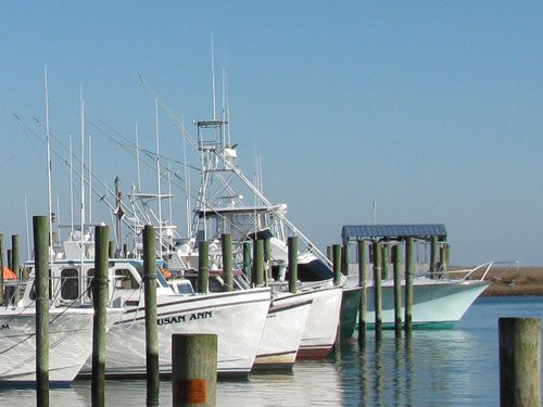 wachapreague virginia fishing boats