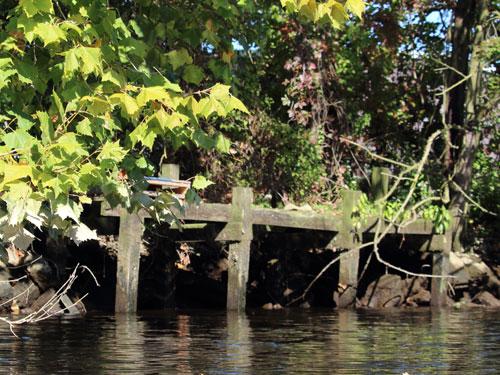 wooden dock